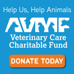 AVMF Veterinary Care Fund